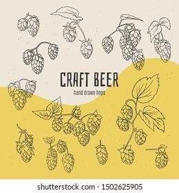 Craft beer hand drawn doodle style hops collection. Stock vector