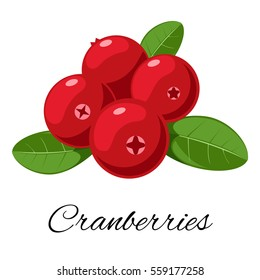 Cranberries isolated icon. Vector illustration for pattern, badge, label, textile, tag etc