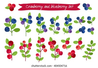 cranberry and blueberry set. Perfect for wallpaper, wrapping paper, textile and package design