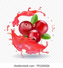 Cranberry in juice splash realistic vector illustration