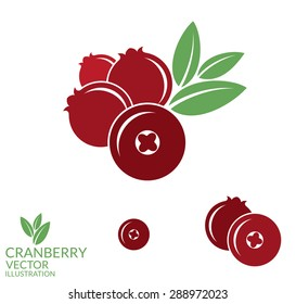 Cranberry. Vector illustration