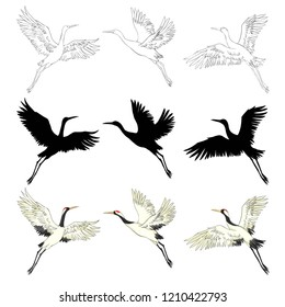 crane sketch, bird flying over white background, set, silhouette, vector illustration