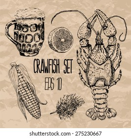 Crawfish set. Vector illustration.