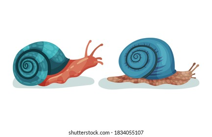 Crawling Snails as Shelled Gastropod with Coiled Shell Vector Set