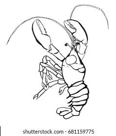 Crayfish icon on a white background vector illustration