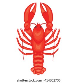 Crayfish vector illustration isolated on a white background