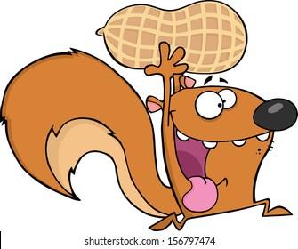 Crazy Squirrel Cartoon Mascot Character Running With Big Peanut