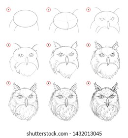 Creation step by step pencil drawing. Page shows how learn to draw sketch of imaginary owls head. Print for artists school textbook. Developing skills for design. Hand-drawn vector image.