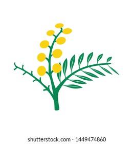 Creative Acacia tree logo template for health, medical, cosmetics and similar companies