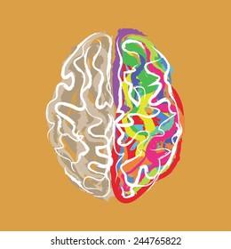 Creative brain with color strokes vector