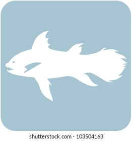 Creative Coelacanth Icon
