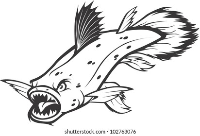 Creative Coelacanth Illustration