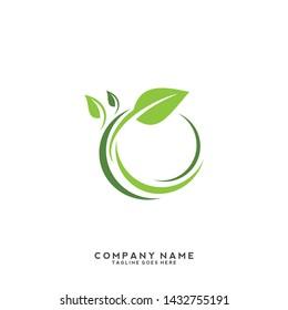 creative green leaf logo template