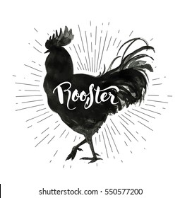 "Creative hand lettering within silhouette of cock painted with black ink. Farm poultry bird outline and word ""Rooster"". Vector illustration for groceries, meat stores, packaging and advertising"