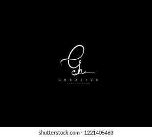 Creative Initial Letter Gn Logo Manual Elegant Minimalist Signature Logotype