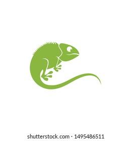 Creative Lizard chameleon logo or icon template vector design