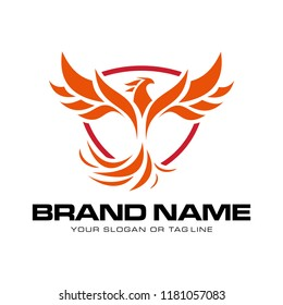 creative logo design phoenix vector template