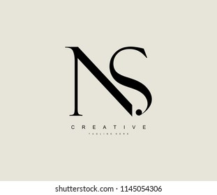 Creative Minimal Abstract Letter NS Luxury Premium Logo