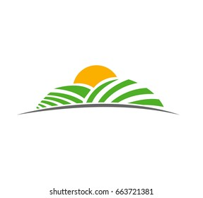 creative and minimal illustration of pasture, meadow, green field with sun rising above field in vector format.