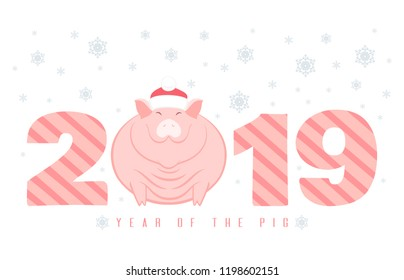 Creative postcard for New 2019 Year with cute pig in Santa hat.Chinese New Year symbol in funny character  lies on numbers on white background with snowflakes.Cartoon flat style vector illustration