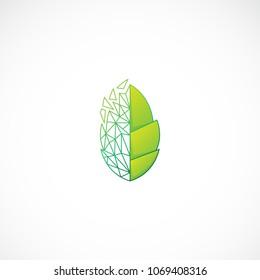 Creative transformation leaf vector designs