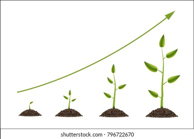 Creative vector illustration of growth up green tree with leaf isolated on background. Business cycle diagram development. Art design seedling gardening plant life. Abstract concept graphic element.