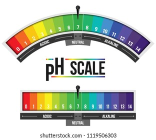 Creative vector illustration of pH scale value isolated on background. Chemical art design infographic. Abstract concept graphic litmus paper element