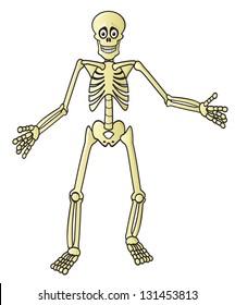 A creepy skeleton drawn in a fun cartoon style.