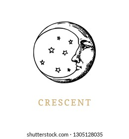 The crescent, hand drawn in engraving style. Vector graphic retro illustration.