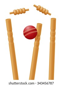 cricket ball caught in the wicket vector illustration isolated on white background