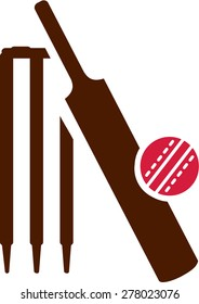 Cricket Equipment Icon