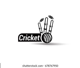 Cricket fever icon, outdoor sprts, vector illustration