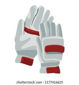 Cricket gloves isolated
