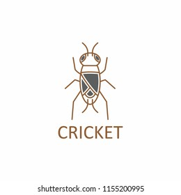 cricket insect logo isolated on white background. vector illustration
