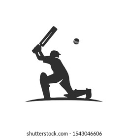 A cricket player who hits the ball with a bat. Sports game