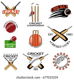Cricket sports bat, ball and wicket in vector