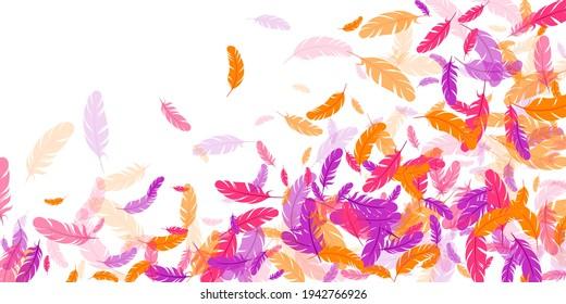 Crimson orange purple feather floating vector background. Flying bird plumage illustration. Weightless soft plumage, feather floating  isolated. Close up graphic design. Bright boa hackle.