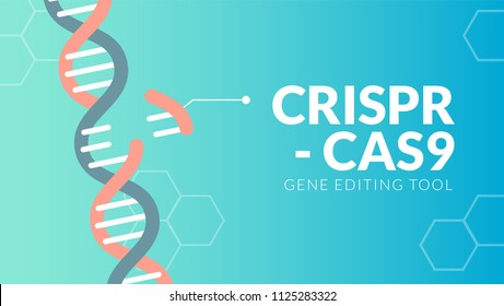 CRISPR CAS9 gene editing tool background