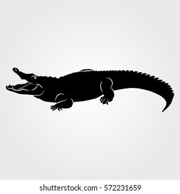 Crocodile, Alligator icon on a white background