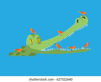 Crocodile and bird. Little birds clean alligator teeth. Symbiotic relationship