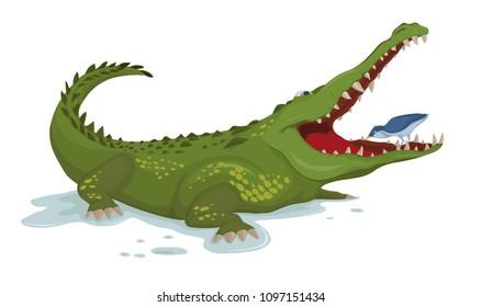 Crocodile and a bird Vector. Cartoon character illustrations