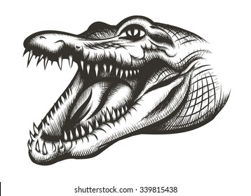 Crocodile head black. Animal reptile, wild predator, mouth and wildlife, teeth dangerous, vector illustration