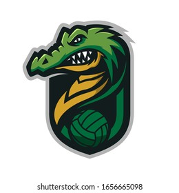 Crocodile head mascot logo for the Volleyball team logo. vector illustration. can be used for your team logo. printed on t-shirts and so on.