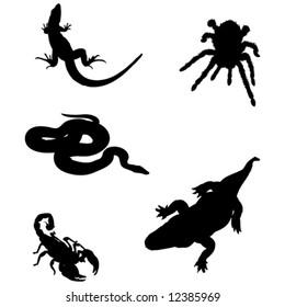 crocodile, lizard, snake, spider, scorpion vector illustration