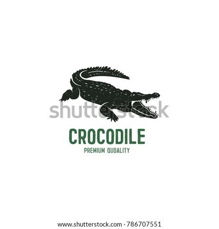 crocodile logo template symbol alligator crocodile stock vector