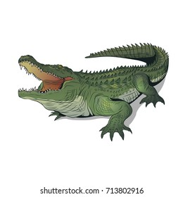 crocodile with open mouth illustration