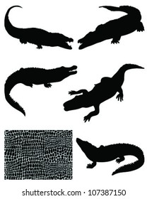 Crocodile silhouettes and skin-vector