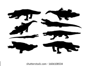 Crocodile vector silhouette on the white background. Alligator silhouette. Cayman silhouette. Alligator silhouette. Hungry powerful animal.