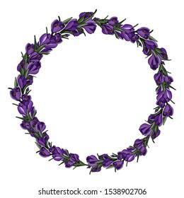 Crocus decoration circle with hand drawn crocus flower. Botanical wreath