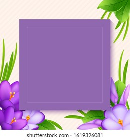 Crocus flowers for greeting card. bouquet with violet crocus or saffron flower and  leaf on the pastel background. Eps 10